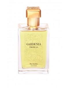 Gardenia Tropical Paul Emilien